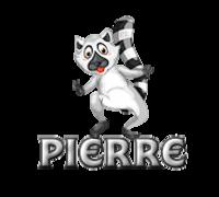 Pierre - RaccoonStepOnName
