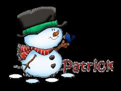 Patrick - Snowman&Bird
