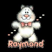 Raymond - HuggingKitten NL16