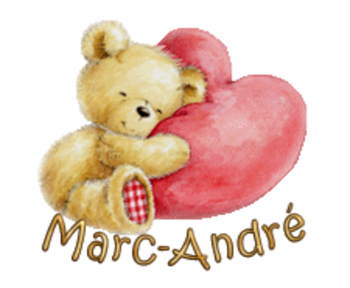 Marc-Andre - ValentineBear2016