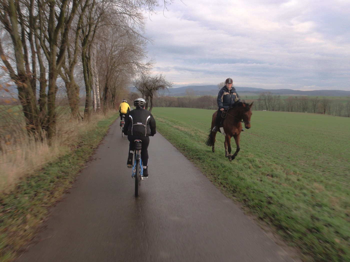 Unterschiedliche Reiter :-)