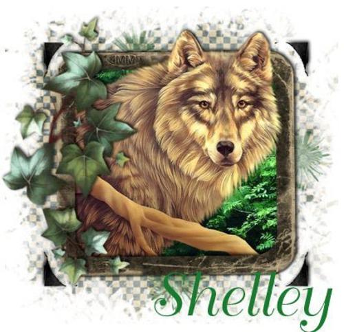 Shelleyn