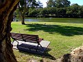 Parramatta River walk 003