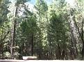 Yosemite 3