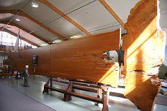 Kauri Museum 2016 August 5 (31)