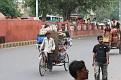 006-delhi birds hospital-img 7756