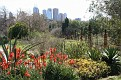 Melbourne Botanical Garden (48)