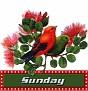 TagSet10 Sunday