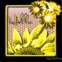 blanksunflower725hello