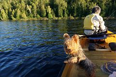 Fishing on Alder Lake
