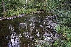 Johnson Falls creek