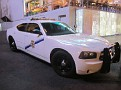 NV - Nevada Taxi Enforcement