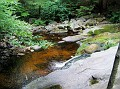 ENDERS STATE FOREST - 08.jpg