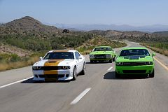 Dodge Challengers and Plymouth Road Runner