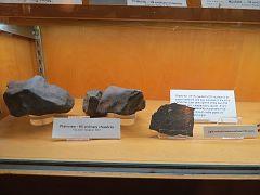 UCLA Meteorite Gallery16