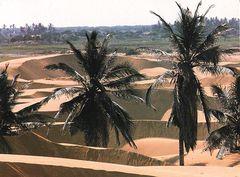 Venezuela - Macuira Sand Dunes