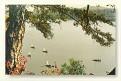 JILIN SHENG - Songhuahu NP