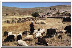 Bolivia - Quechua PE