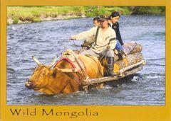 Mongolia PE