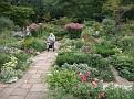 022. Foersters garden, and Corine