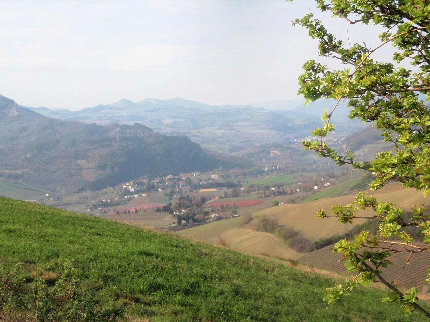 Gallisterna