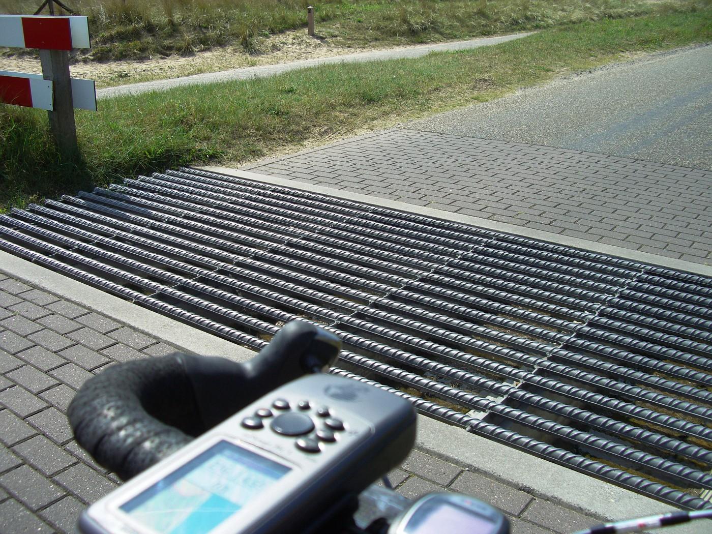 Cattle grid in Kennemerland