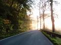 Der Nebel muss der Sonne weichen