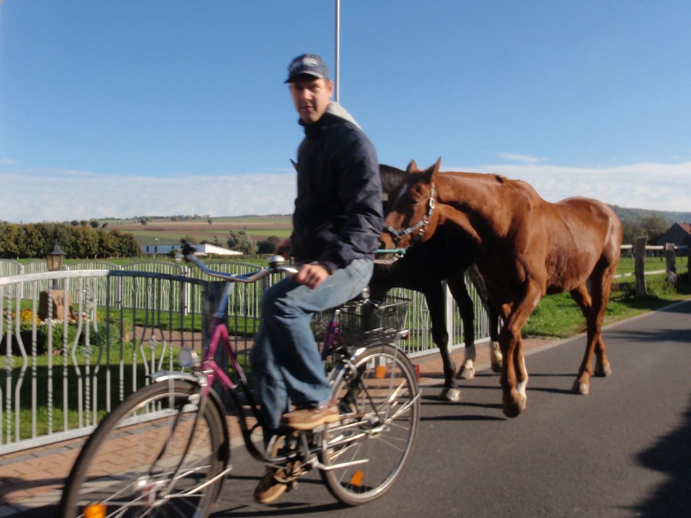 Fahrrad mit 2 PS