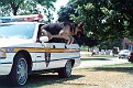 IL - Lake County Sheriff 1991 Caprice wagon
