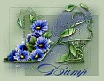 FloralShoeBump