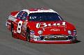 Dale Earnhardt Jr. NNCS 3M Performance 400 at Michigan International Speedway
