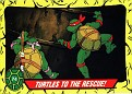 Teenage Mutant Ninja Turtles #074