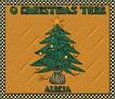 Alecia-gailz-Christmas Tree jp