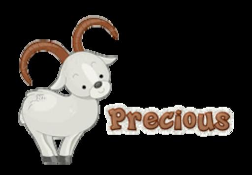 Precious - BighornSheep