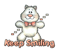 Keep Smiling - HuggingKitten NL16