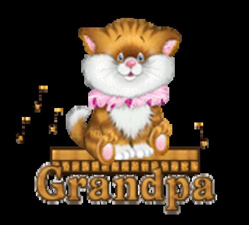 Grandpa - CuteKittenSitting