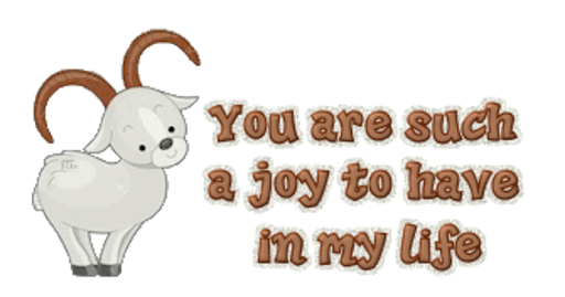 You are such a joy to have in my life - BighornSheep