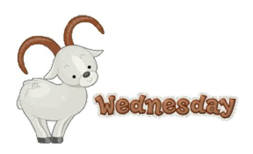 DOTW Wednesday - BighornSheep