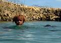 Kids Swimming at Deco Stop