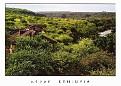 OROMYA - Awash Falls Lodge