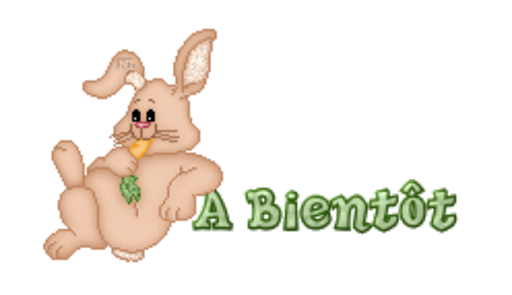 A Bientot - BunnyWithCarrot