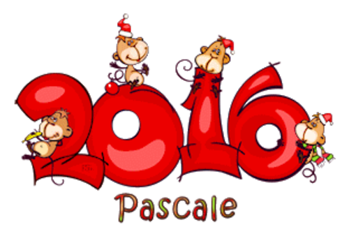 Pascale - 2016WithMonkeys