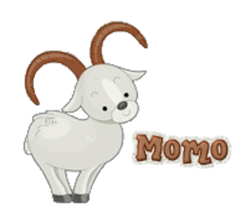 Momo - BighornSheep