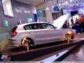 BMW Essen 2004 24