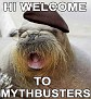 Welcome to mythbusters