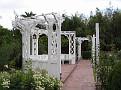 LA Arboretum - Rose Garden3