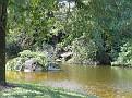 Morikami Japanese Gardens12
