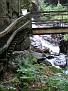 New Hampshire - Franconia - Avalance Falls02