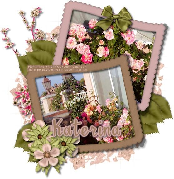 Katerina BW BloomingPink