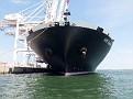 NYK VENUS Port 2000 Le Havre 20120528 033